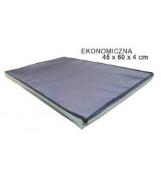 Mata dezynfekcyjna, ekonomiczna (45cm x 60cm x 4cm)