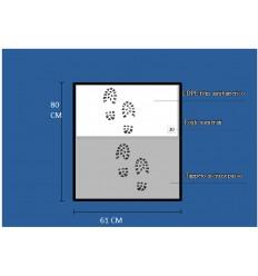 Antybakteryjna mata wejściowa - Two Steps Mod. ST